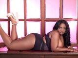 TracyOwen livejasmin.com webcam